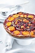 Apricot,quetsch plum,mirabelle plum and summer fruit tart