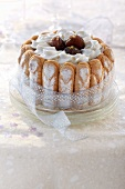 Candied chestnut Charlotte