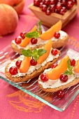 Krisprolls dry bread with cream cheese, redcurrants, apricots and mint