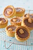 Chocolate-hazelnut mini tartlets