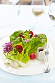 Mixed lettuce, beetroot, radish, fennel and flower salad
