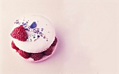 Violet-raspberry macaroon