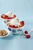 Frozen yoghurt with fresh and dried fruit
