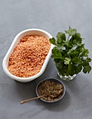 Ingredients for cumin-flavored cream of orange lentil soup with fresh cilantro