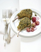 Lamb chops coated with mustard and herb breadcrumbs