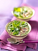 Chilled cream of watercress soup with crushed hazelnuts and spinach-corn lettuce