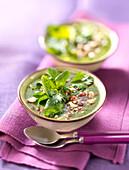Kalte Brunnenkresse-Cremesuppe mit gehackten Haselnüssen und Feldsalat