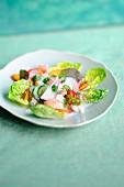 Salat mit Lachs, Gurke und Nektarine