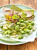 Fennel, cucumber, broad bean, beetroot sprout and lime zest salad