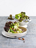 Lettuce and dried fruit salad with creamy avocado dressing