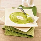 Creamed pea pod soup
