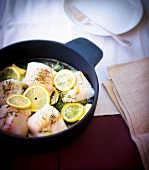 Fish casserole with thyme and lemon