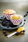 Blueberry mini cakes
