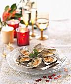 Gratinierte Austern mit Emmentaler