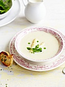 Cream of white asparagus soup