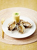 Oysters with parsnip soup