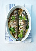 Cooked bass marinated in orange and lemon juice, fresh herbs and spices