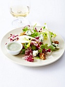 Mixed lettuce, walnut and Roquefort salad