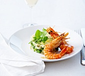 Pan-fried shrimps,lemon and basil risotto