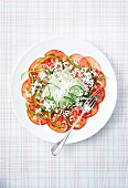 Tomatoo, cucumber and green pepper carpaccio