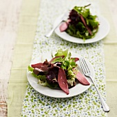 Duck Magret salad from The Landes