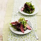 Salat mit Entenbrust aus den Landes