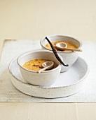Vanilla-flavored Crème brûlée