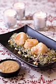 Scallop skewers with sprouts and pine nut sauce