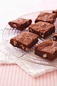 Dunkle Schokoladen-Brownies mit Paranüssen