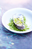 Oyster with lime granita