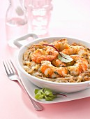 Fennel,shrimp and dill gratin