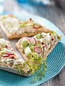 Philadelphia cheese mousse,radish and cucumber sweedish bread sandwich