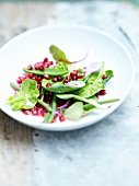 Mixed green vegetable and pomegranate seed salad
