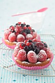 Wild fruit tartlets