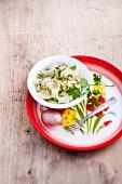 Chayote-Salat (Antillen)
