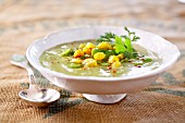 Mexican broad bean, bean and sweet corn soup