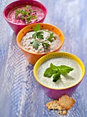 Three different creamy vegetable dips and Monaco crackers