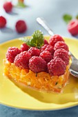 Apricot tartare and raspberry heart