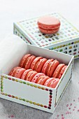 Strawberry Tagada macarons