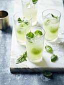 Erfrischungsgetränk mit Gurke und Basilikum