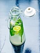 Lemon and mint detox water
