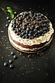 Chocolate and blueberry cake