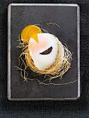 A soft-boiled egg with a slice of truffle in a nest of dried pasta