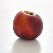 Nectarine on a white background