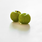 Greengages on a white background