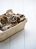 Hamper of closed oysters