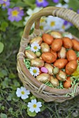Small basket of Easter eggs in the grass