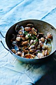 Sauteed clams with fresh herbs