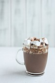 Cup of hot chocolate with marshmallows and chocolate chips