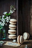 Coffee macaroons with chocolate and coffee filling